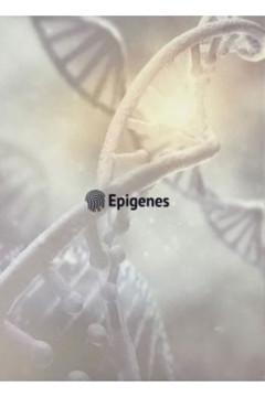 Fichário Epigenes