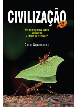 Civilização 2.0: por que estamos sendo obrigados a imitar as formigas